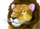 How to draw a realistic male lion