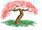 How to Draw Cherry Blossom Tree