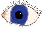 How To Draw A Simple Eye