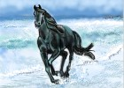 How to Draw a horse galloping through surf