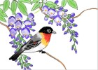 How to Draw a bird among blossoms