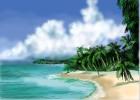 How to Draw Beach Palms