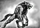 How to Draw a Werewolf In Black And White