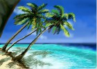 How to Draw a Tropical Beach