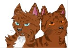 How to Draw Hawkfrost And Brambleclaw from Warrior