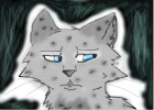 Ashfur in pain
