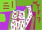 Wtf Cat!!^-^