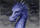 How to Draw Saphira (Eragon)