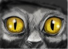 How to Draw Realistic Feline Eyes