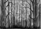 How to Draw a Misty Forest