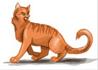 How to Draw Firestar from Warrior Cats