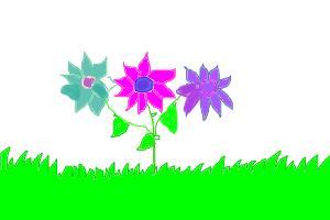 Cute 3 Flower