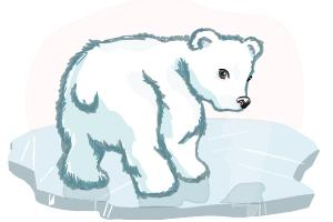 How to Draw a Baby Polar Bear