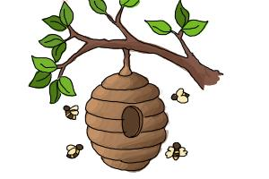 How to Draw a Beehive