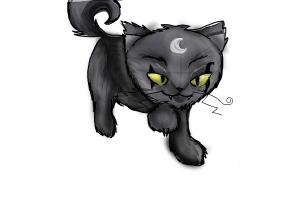 How to Draw a Black Cat For Halloween