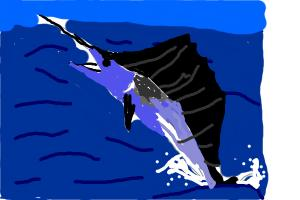 How To Draw A Black Marlin