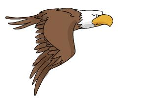 How to draw a cartoon Eagle