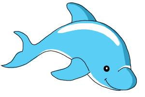 How to Draw a Bottlenose Dolphin - DrawingNow