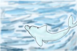 How to Draw a Dolphin In 2 Steps!!!!