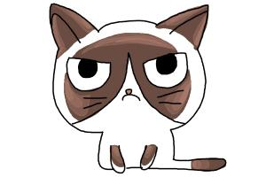 How to Draw a Grumpy Cat