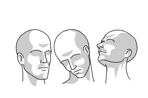 How to Draw a Head Shape