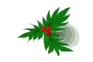 How to Draw a Holly Leaf