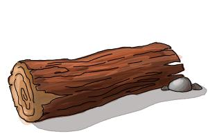 How to draw a log