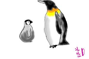 How to draw a penguin and his baby