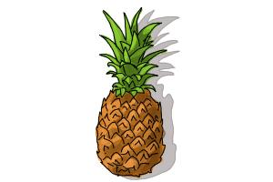 How to draw a Pineapple