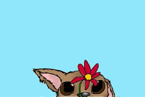 How to Draw a Puppy Looking At a Flower