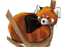 how to draw a red panda in a tree