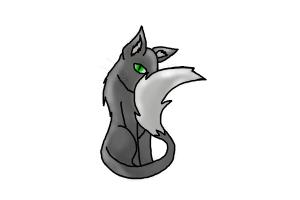 How To Draw A Gray Cat