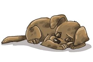 How to Draw a Sleeping Dog