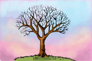 How To Draw A Tree Without Leaves Drawingnow