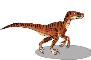 How to Draw a Velociraptor
