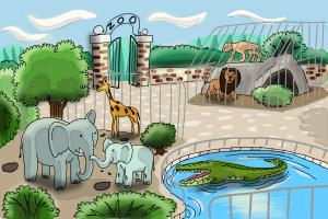 How to draw a zoo