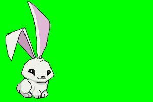 How to draw an Animal Jam Bunny