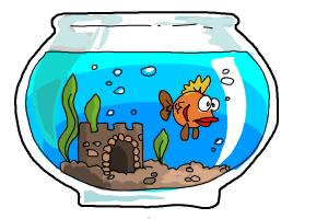 How to draw aquarium