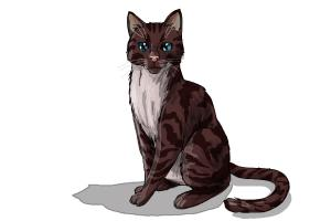 How to Draw Hawkfrost from Warrior Cats