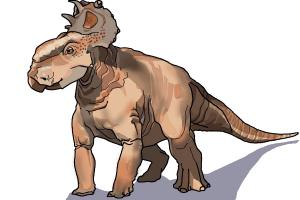 How to Draw Patchi from Walking With Dinosaurs