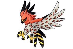 How to Draw Talonflame from Pokemon X And Y