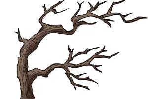 How To Draw Tree Branches Drawingnow Free cartoon tree with branches, download free clip art. how to draw tree branches drawingnow