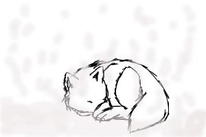 how to draw white wolf in snow