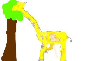howtodrawa giraffe eatinf a tree