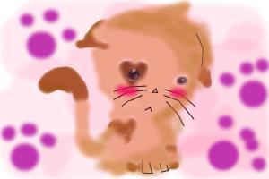 Little Kitten ≪3