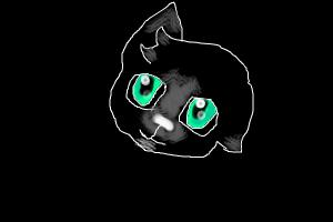 Night Kitty ~ Seafoam eyes