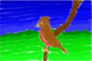 robin overlooking horizon