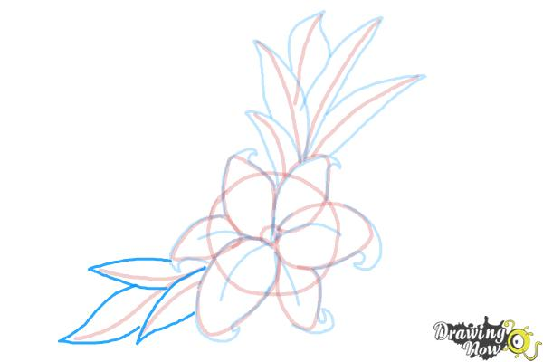 How to Draw a Beautiful Flower - Step 11