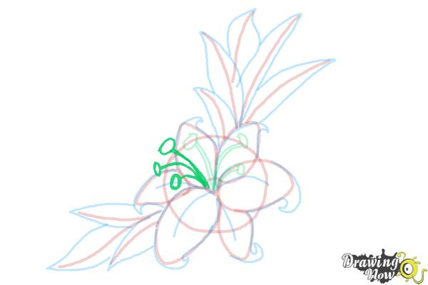 How to Draw a Beautiful Flower - Step 13