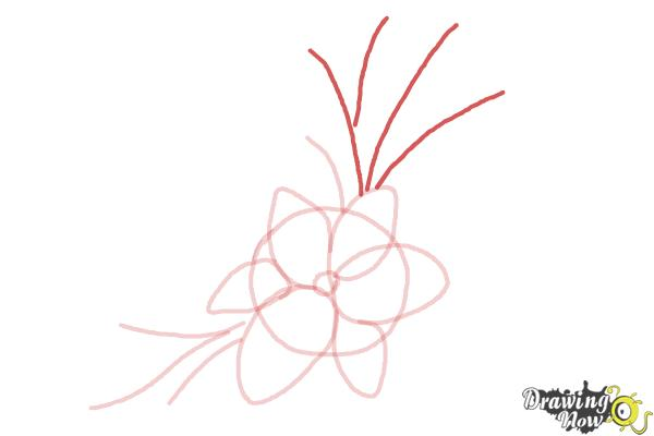 How to Draw a Beautiful Flower - Step 5